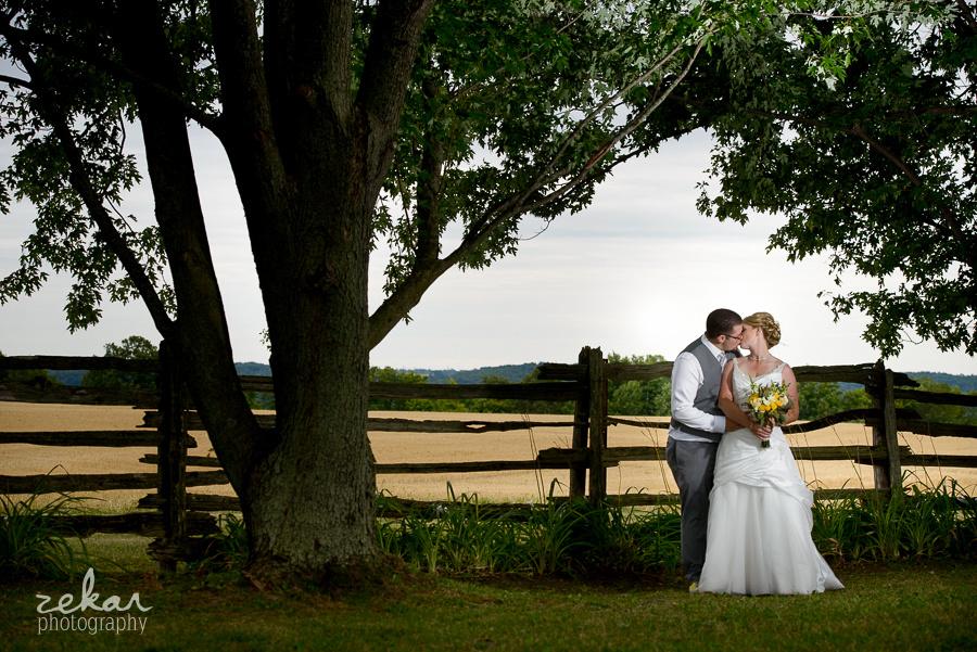 bridal couple posing underneath big tree