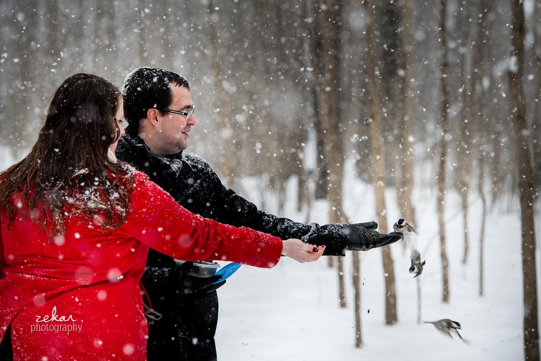 couple feeding three birds in woods