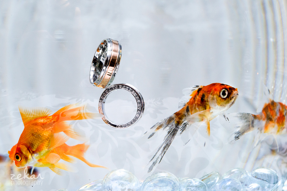 wedding rings in family fish bowl