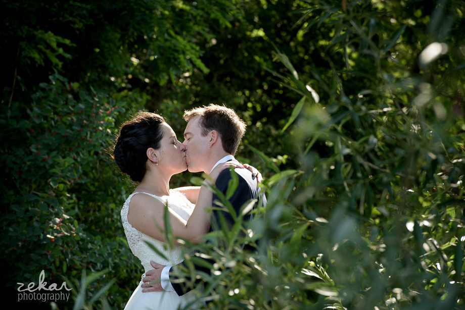 couple kissing in vineyards