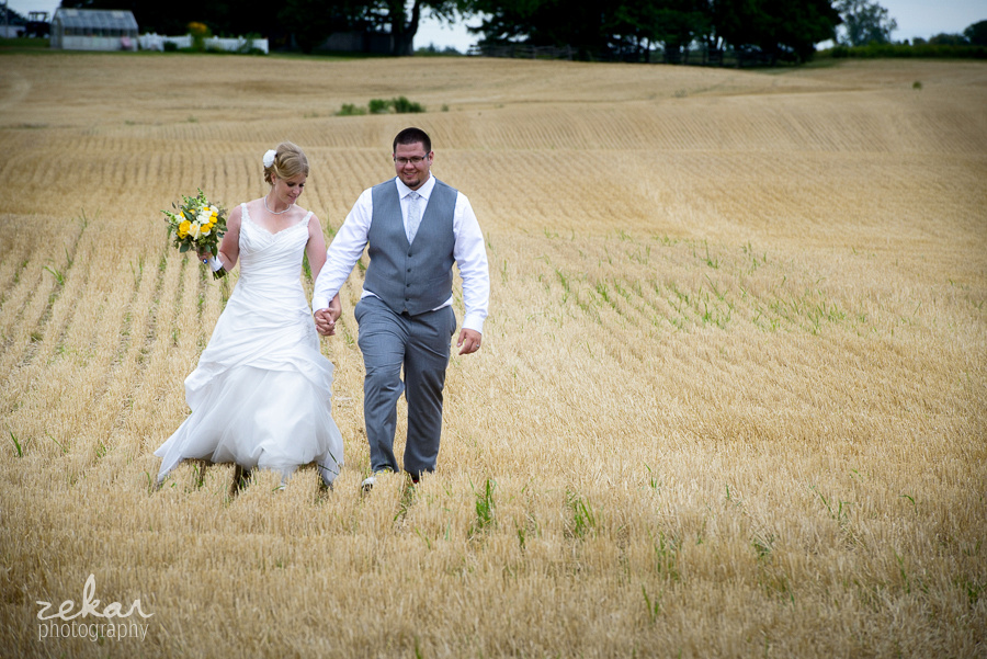 bridal couple walking through wheatfield