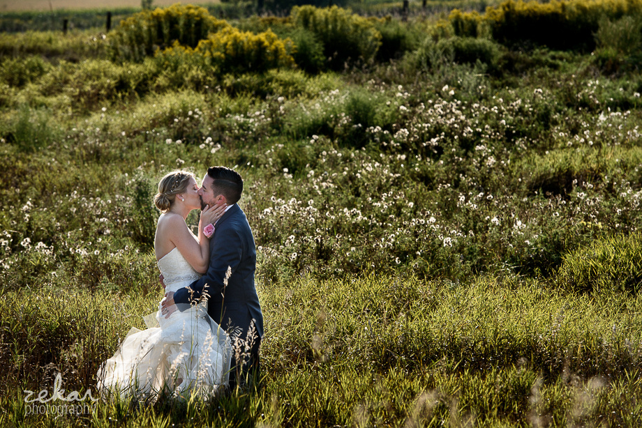 bride and groom in yellow field